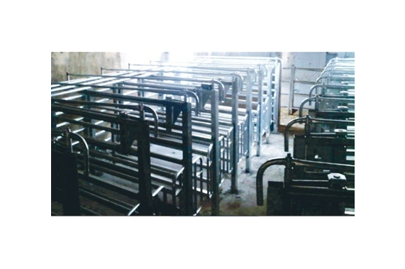 Individual cattle stall BLASAU