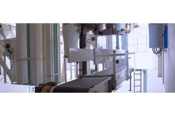 1 Mouth Packing Machine | PTMA
